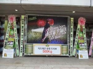 gd-wreaths-4-800x600